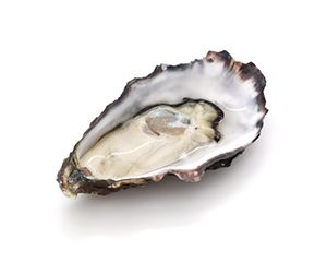 natural male enhancement capsule oyster